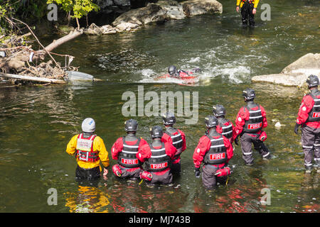Members of Greater Manchester Fire and Rescue Service undertaking water rescue training in the River Irwell near Burrs Activity Centre, Bury - Stock Image