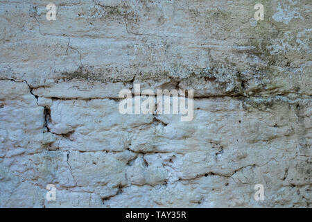 Old wall with mold, musk and peeling. Pathologies of the construction. Humidity. - Stock Image