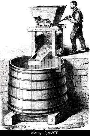 An engraving depicting the pressing of grapes for wine. France 1870 - Stock Image
