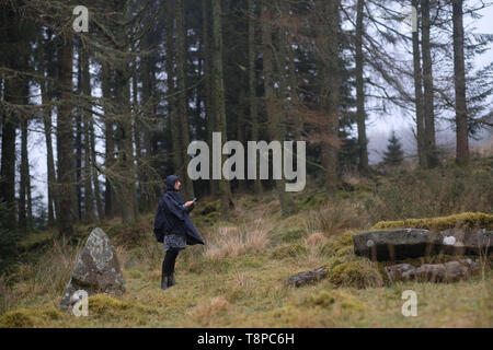 A woman​ using a phone in a forest. - Stock Image