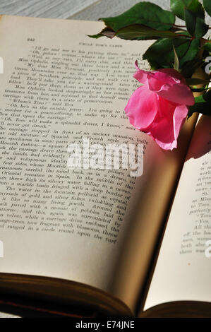 Old book and rose - Stock Image