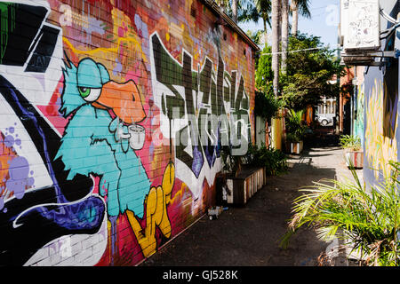 Street art in an alleyway off of Darby Street in Newcastle, New South Wales, Australia. - Stock Image
