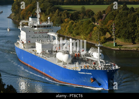 LPG-Carrier Trammo Paris eastbound in the kiel canal - Stock Image