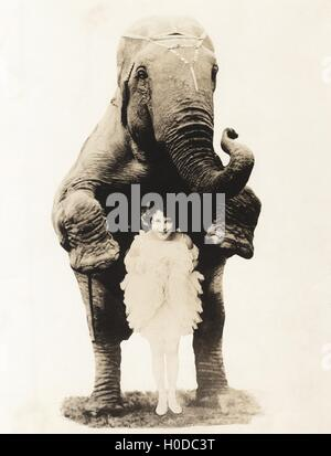 Portrait of young woman and elephant in circus - Stock Image