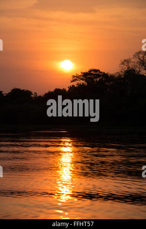 Golden sunset with the sun and reflection on the Cuiaba River, Pantanal, Mato Grosso, Brazil - Stock Image