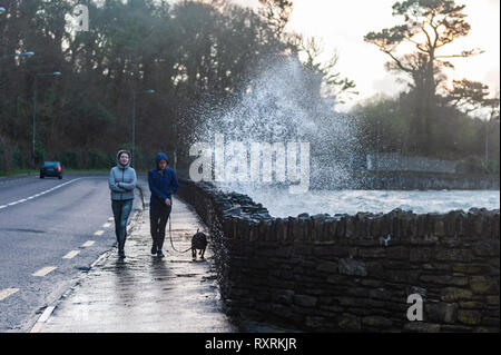 Bantry, West Cork, Ireland. 10th March, 2019.  Two young women brave the waves crashing onto the footpath whilst walking their dog along Bantry Sea Front.  Winds are currently reaching speeds of 47 KM/H with gusts up to 80 KM/H. Credit: Andy Gibson/Alamy Live News - Stock Image