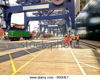 Dock workers walking at Port of Felixstowe, England - Stock Image