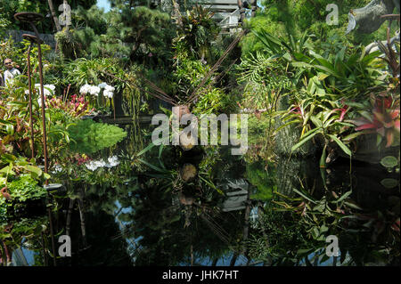 Metal Dragonfly sculpture in pond, Flower Dome, Gardens by the Bay, Singapore - Stock Image