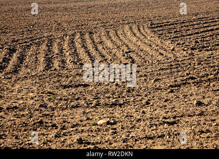An abstract view of a field drilled in readiness for summer cropping at Blakeney, Norfolk, England, United Kingdom, Europe. - Stock Image