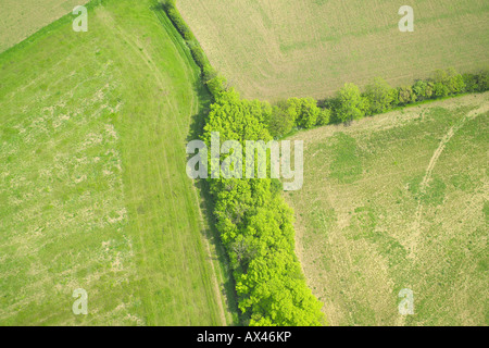Aerial view of trees and hedgerows separating fields - Stock Image
