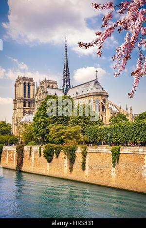 Notre Dame de Paris - Stock Image