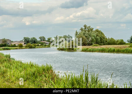 Fens landscape at the River Great Ouse, also known as the Fenland, Ely, Cambridgeshire, England | Fens Auen Landschaft in der Nähe von Ely, Cambridges - Stock Image