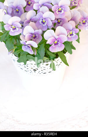 Pansy flowers in shades of lilac, pink and purple against white, nostalgic and romantic background template with copy space - Stock Image