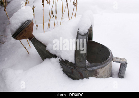 Garden watering can covered with snow - Stock Image