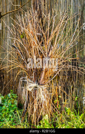 Bundle of twigs tied for garden decoration - France. - Stock Image