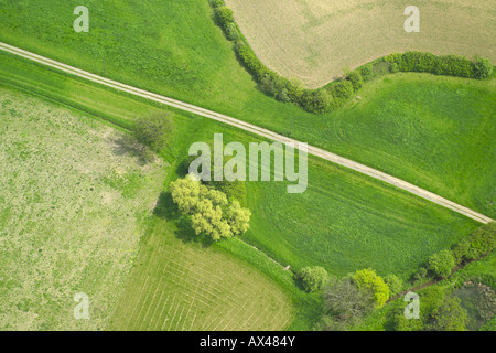 Aerial view of a farm track beside a hedge and some trees - Stock Image