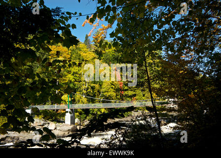 Pedestrian foot suspension bridge Canyon Sainte Anne River park Quebec - Stock Image