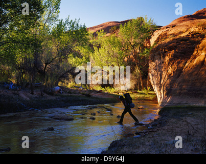 Backpacker Rick Hutchinson crossing Coyote Wash Coyote Gulch tributary Escalante River Glen Canyon National Recreation - Stock Image