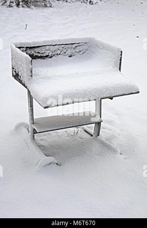 BBQ in snow - Stock Image