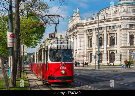 Ringstrasse Vienna, view of a tram on the Ringstrasse in central Vienna with the national theatre building (Burgtheater) in the background, Austria. - Stock Image