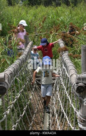 Small children walking across a rope bridge at the Werribee open range zoo, Melbourne, Victoria. - Stock Image