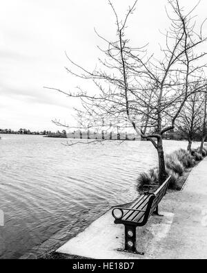 A bench at the edge of a swollen inland lake. Black-and-white. B&W - Stock Image