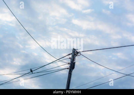 Overhead rural electricity distribution cables against evening sky. - Stock Image