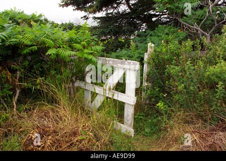 Gate on the coast of Maine - Stock Image
