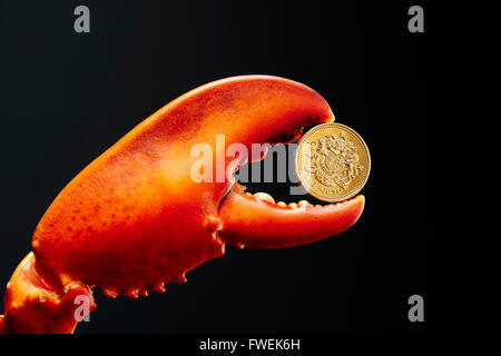 Pound coin in lobster claw - Stock Image