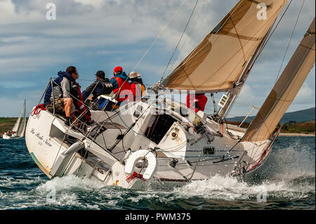 Sailing yacht taking part in GAS Calves Week in Schull, West Cork, Ireland. - Stock Image