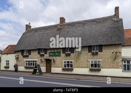 The White Hart, a thatched family run inn, on the Northampton Road, Grafton Regis,UK - Stock Image
