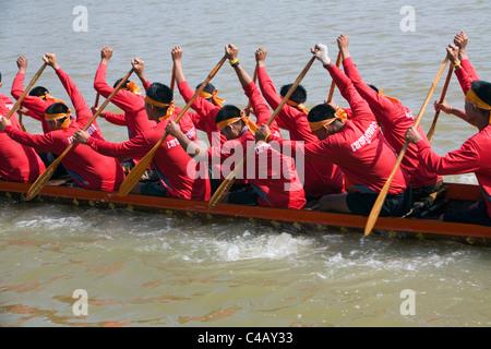 Thailand, Nakhon Ratchasima, Phimai.  Longboat team racing at the Phimai festival boat races. - Stock Image
