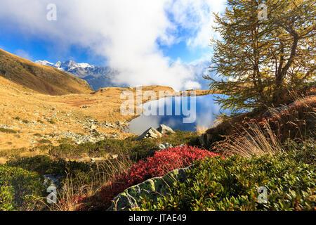 Clouds on peaks of Bernina Group reflected in Lake Arcoglio, Val Torreggio, Malenco Valley, Valtellina, Lombardy, Italy, Europe - Stock Image