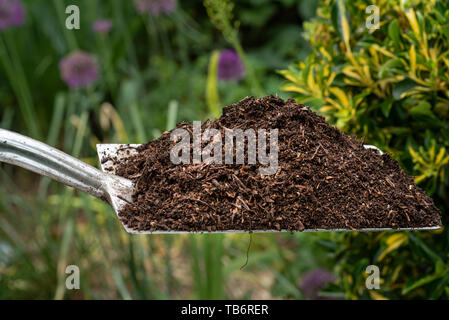 Well rotted garden compost. - Stock Image