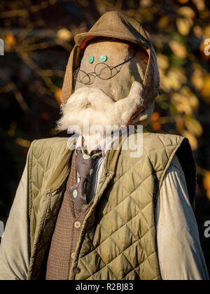 Scarecrow based on old man with beard, round glasses and hat like Mr McGreggor - Stock Image