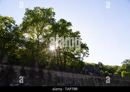 Sunshine filters through foliage of trees in the grounds of (Eberbach Monastery) Kloster Eberbach in Hesse, Germany. - Stock Image