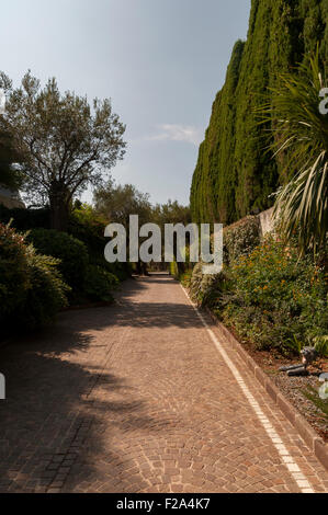 Pathway into Roquebrune Park, lined with Fir trees and cobbled stones. France - Stock Image