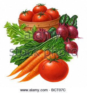 Vegetable Juice Group - Stock Image