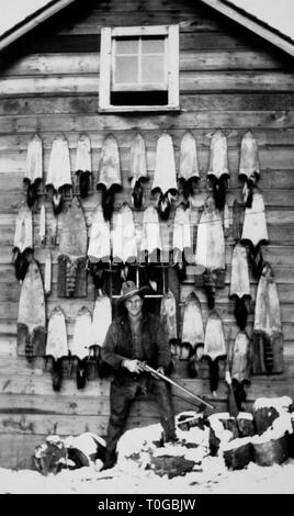 A hunter poses with a huge collection of pelts hung on the side of a barn, ca. 1930. - Stock Image