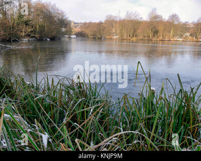 Ashbourne, Derbyshire. 12th Dec, 2017. UK Weather: frozen ice on a lake in the market town of Ashbourne Derbyshire - Stock Image