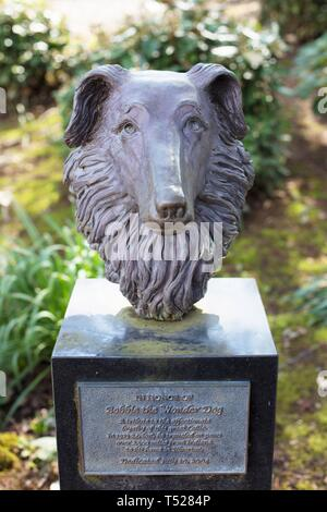 A memorial to Bobbie the Wonder Dog, who was lost and traveled 2,500 miles to get home, at the Oregon Garden in Silverton, Oregon, USA. - Stock Image
