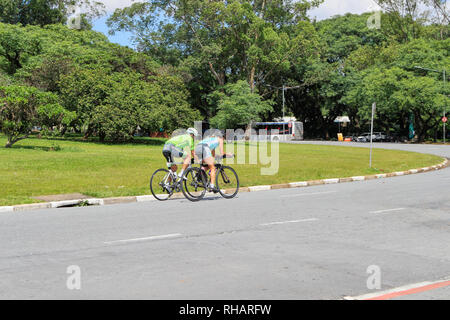 Woman an man  riding a bicycle in the campus of the Sao Paulo university. Sao Paulo . Brazil. South America - Stock Image