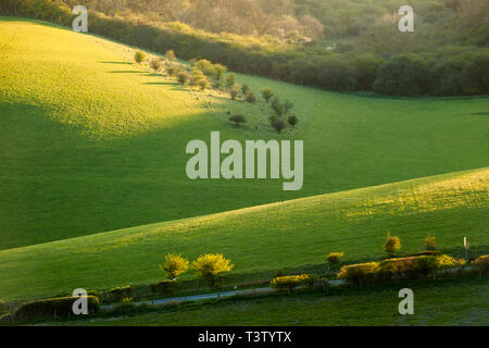 Spring sunset on the South Downs in West Sussex, England. - Stock Image