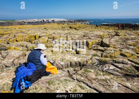 A wildlife tourist on the Farne Islands, Northumberland, UK. - Stock Image