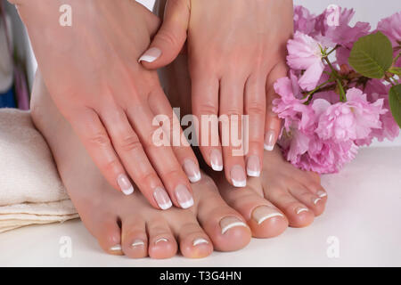 Girl hands and bare feet with french manicure and pedicure nails polish on white towel in beauty salon and decorative pink flower in background - Stock Image