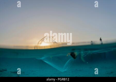 Split shot of a plastic cup floating on the surface of the ocean during sunset - Stock Image
