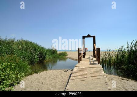 italy, basilicata, policoro, riserva regionale bosco pantano, wwf natural reserve - Stock Image