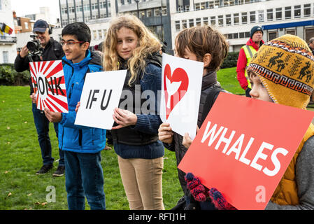 London, UK. 26th January 2019. London protest against the intended resumption of whaling by Japan.The Japanese government recently backed out of an international agreement banning commercial whaling. Campaigners rally at Cavendish Square for the march to the Japanese Embassy. Four children holding signs with Honk IFU Love Whales. Credit: Stephen Bell/Alamy Live News. - Stock Image