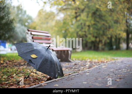 Autumn background in the park during the day - Stock Image