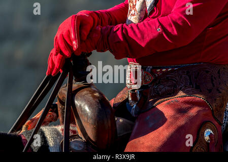 USA, California, Parkfield, V6 Ranch close up of cowgirl's hands in red gloves on the pommel of the saddle (MR) - Stock Image